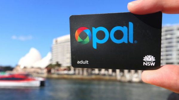 シドニー留学・ワーホリで必須のオーパルカード(Opal Card)